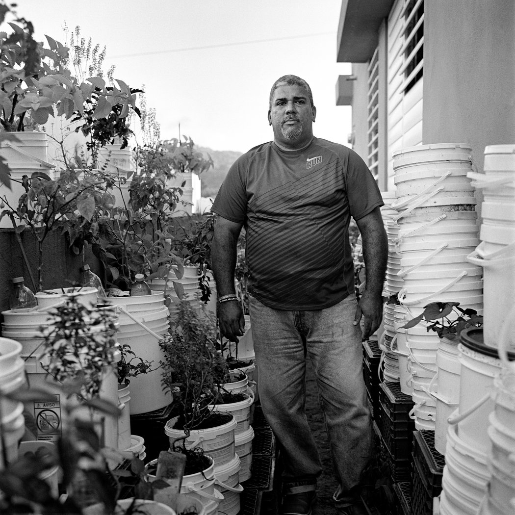 Puerto Rico's Lament