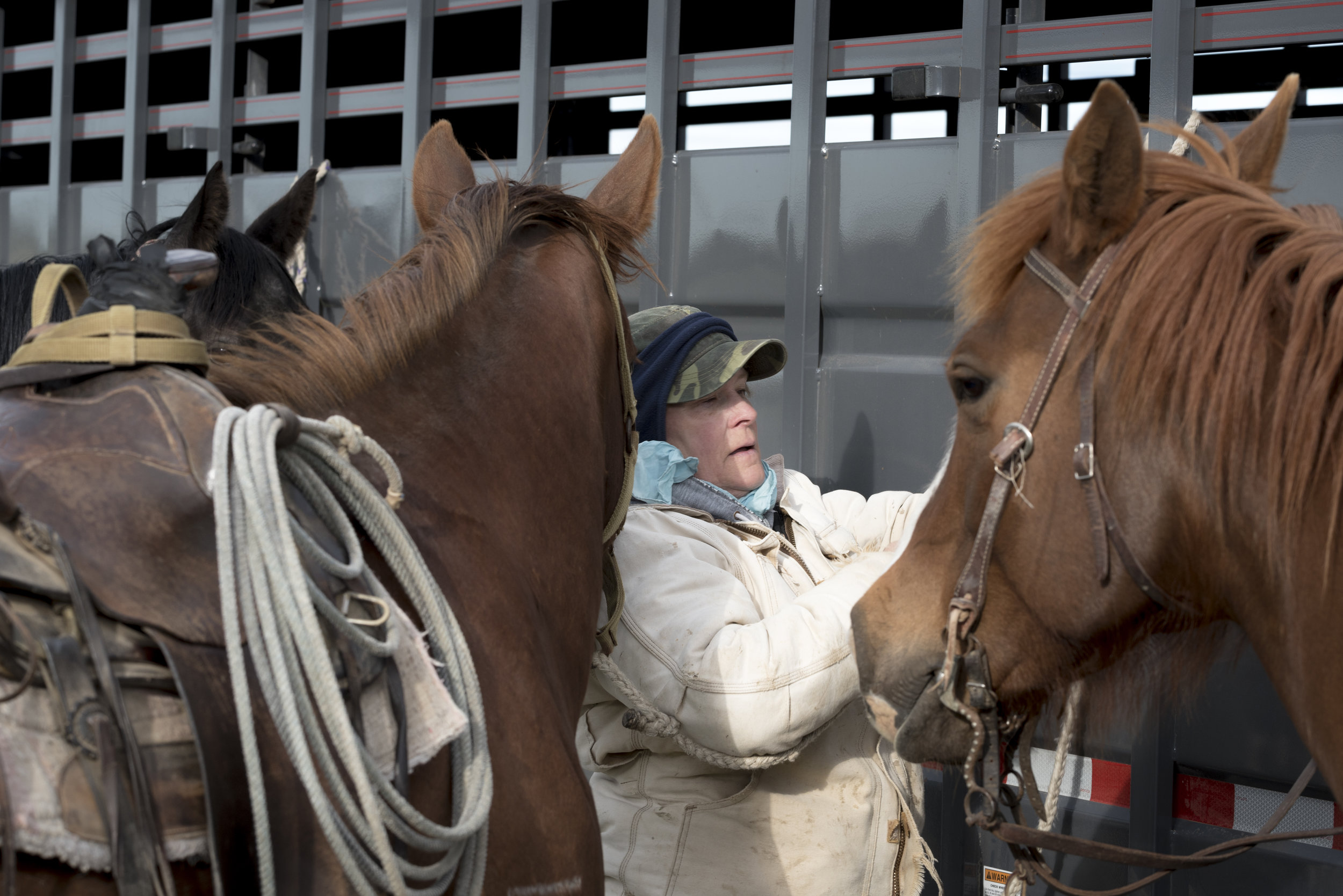 In Montana, Land Transfer Threatens the American Rancher's Way of Life