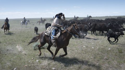 Ranching Life on the High Plains of Montana