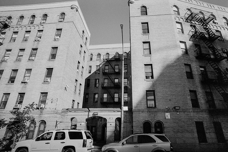 As the Nation Braces for a Wave of Evictions, Some Bronx Tenants Fight Back