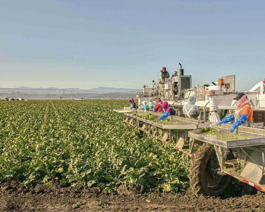 In California's Agricultural Heartland, a Mayor Is Running on Compassion
