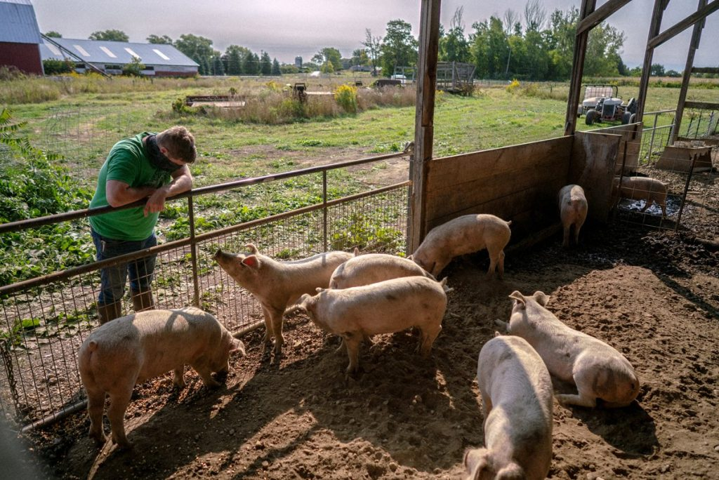 The New York Farmers Responding to Food Insecurity